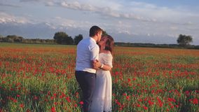 Marriage proposal at field of flowers at happy womens day stock footage