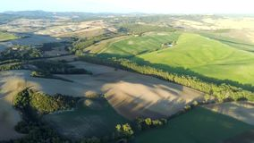 Footage by drone of nature landscape beautiful hills forests fields and vineyard stock video