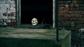 Fake Skeleton Head in the Doorway. In front of the Crime scene. This is footage of Fake Skeleton Head in the Doorway. In front of the Crime scene stock video footage
