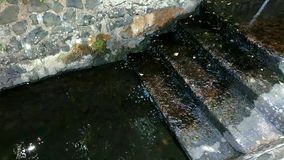 Water flowing on steps. Footage of fountain water steadily flowing down stone steps alongside a stone wall stock footage