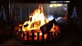 Log fire burning stock video footage
