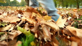 A footage of a kid walking through the autumnal fallen leaves stock footage