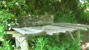 Old and abandoned concrete bench. This is a footage of Old and abandoned concrete bench in summer. southeast Europe stock video footage