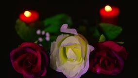Footage of red and pink roses flower with red candle burning. Valentine day stock video footage