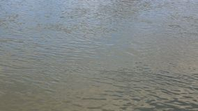 River Water Surface. Footage of river water surface flow. Location: River Seine outside of Paris stock footage