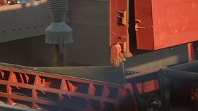 Close view of ship loading grain crops on bulk freighter via trunk to open cargo holds at silo terminal in seaport. Footage of ship loading grain crops on bulk stock footage