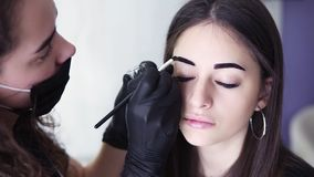 Footage from the shoulder, caucasian beautician is applying dark paint on brows of young woman by brown dye, coloring. Procedure in a beauty studio, close-up stock video
