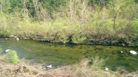 A Small River next to the Railway line. This is footage of A Small River next to the Railway line stock video