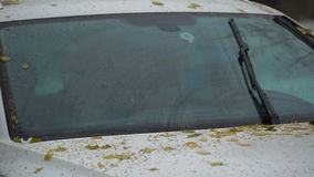 Footage windshield wipers clean glass is in the car from the leaves and rain. 4K stock video