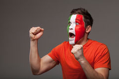 Footbal fan is rooting. Royalty Free Stock Photos