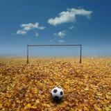footbal pitch arkivfoto