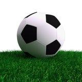 Football. Soccer ball on a grass Stock Photography