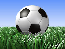 Football. On grass royalty free stock photo