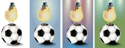 Football with abstract background and chicken Royalty Free Stock Photos