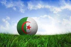 Football in algeria colours Royalty Free Stock Photography