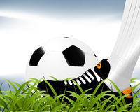 Football Background. Soccer sport background Royalty Free Stock Photo