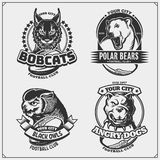 Football badges, labels and design elements. Sport club emblems with polar bear, bobcat, pitbull and owl. Vector royalty free illustration