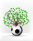 Football ball in front of green leafy tree vector Royalty Free Stock Photos