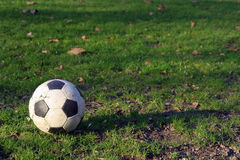 Football ball on the grass. In the park Stock Photo