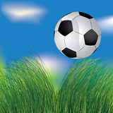 Football ball in the grass Stock Photography