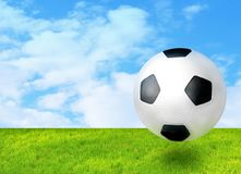 Football ball on the grass royalty free stock images
