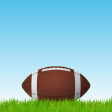 Football ball on a grass field. Vector background. Stock Image