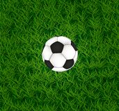 Football ball on the grass. Football or soccer ball on the grass Stock Photo