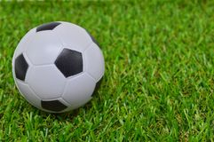 Football ball on grass Stock Photos
