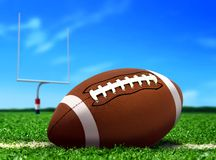 Football Ball on Grass under Blue Sky Royalty Free Stock Images