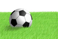 Football ball on green grass Royalty Free Stock Photos