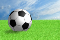Football ball on green grass. Stock Image