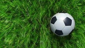 Football ball on green grass Stock Image