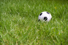 Football ball on green grass Royalty Free Stock Image