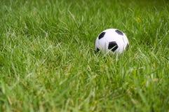 Football ball on green grass Royalty Free Stock Image