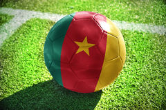 Football ball with the national flag of cameroon Royalty Free Stock Photos