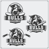 Football, baseball and hockey logos and labels. Sport club emblems with bull. Royalty Free Stock Images