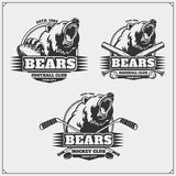 Football, baseball and hockey logos and labels. Sport club emblems with head of bear. Royalty Free Stock Photo