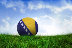 Football in bosnia and herzegovina colours Royalty Free Stock Images