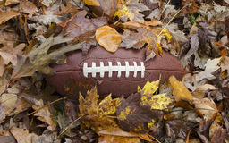 Free Football Buried In Fall Leaves Stock Photography - 98275962