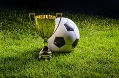 Football cup with football ball Royalty Free Stock Photo