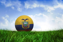 Football in ecuador colours Stock Images