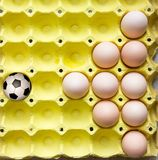 Football in the egg tray royalty free stock images