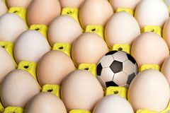 Football in the egg tray stock image