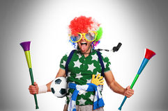 Football fan. In a coloured wig and big glasses Royalty Free Stock Photo