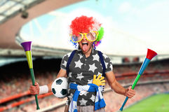 Football fan. In a coloured wig and big glasses Stock Photography