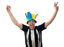 Football Fans Celebrating Royalty Free Stock Images