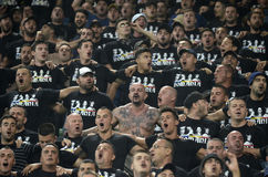 Football fans cheering royalty free stock image