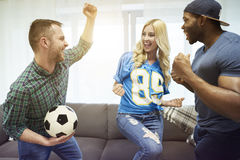 Football fans Royalty Free Stock Image