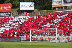Football fans Stock Images