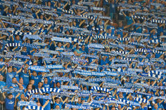 Football fans. Royalty Free Stock Photography